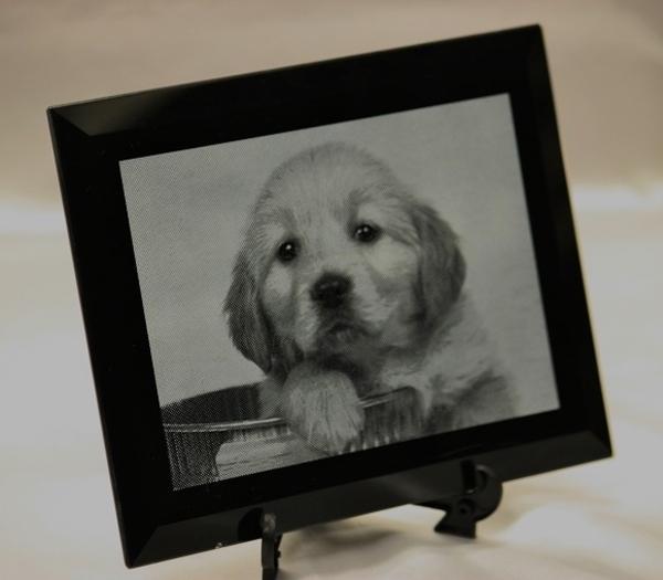 愛犬を写真彫刻で