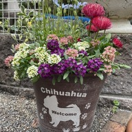 鉢植えに可愛い彫刻を♪