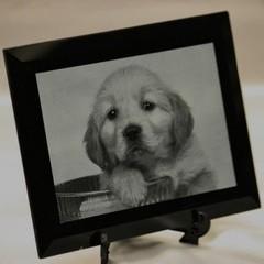 -愛犬写真彫刻 化粧箱、スタンド(車、マイホーム、新築祝い、バイク)